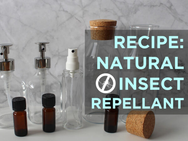 HOW TO MAKE NATURAL BUG SPRAY AND MOSQUITO REPELLANT & WHAT HELPS WITH ITCHY INSECT BITES