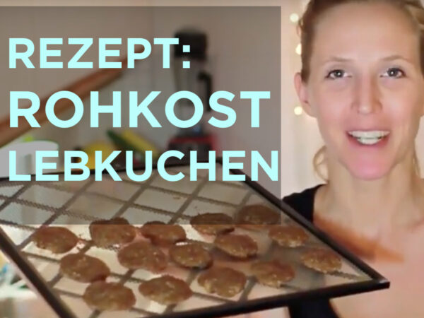 Rezept für gesunde Rohkost Lebkuchen vegan