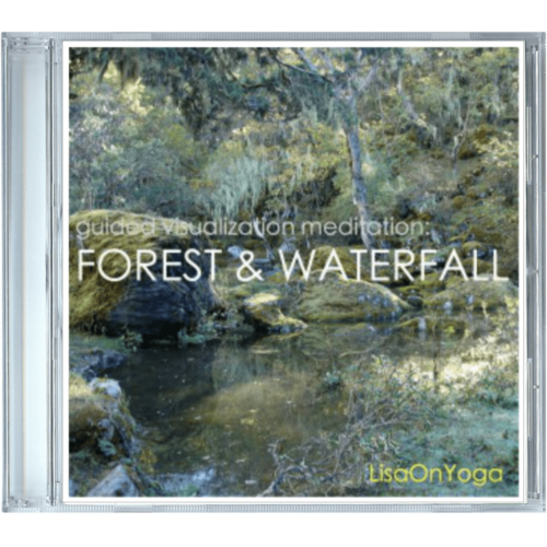 cd-cover-forest-waterfall