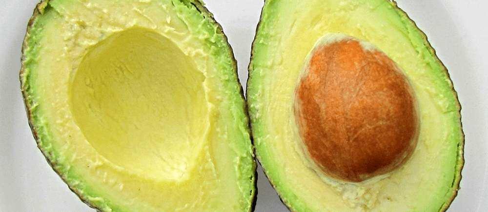 avocado-creamy