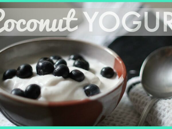 Probiotic Coconut Yogurt Recipe