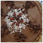 100 Percent Raw Love – Raw Food Recipes Collection eBook Dessert – Rohtopia.001