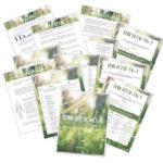 Deine Detox Woche – Smoothie Challenge – Online Kurs Programm – Saftkur – Saftfasten – Rohtopia Smoothiechallenge